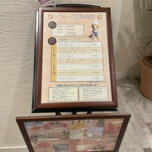 愛犬あさと軽井沢旅行 ⑥ ルシアン旧軽井沢に宿泊。