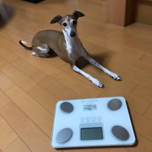 体重測定(≧∇≦)