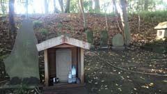 藤沢~白旗神社~大庭城址~茅ヶ崎里山公園~寒川神社