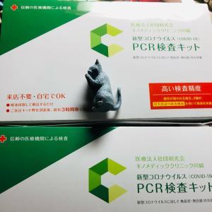 怖い話とPCR検査キットとコロナワクチン接種の必要性