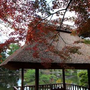 縮景園の紅葉(広島)