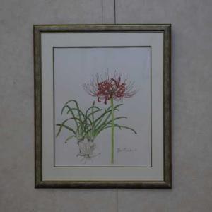 ボタニカルアート作品展 2(広島)