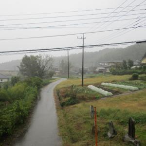 台風対策|網戸の外れ防止の調整をしましょう