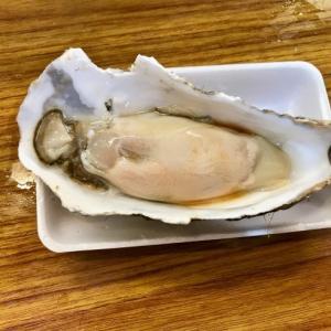 近江町市場で前菜!!──「忠村水産 小売部」(冬の北陸ドライブ旅行 その1)