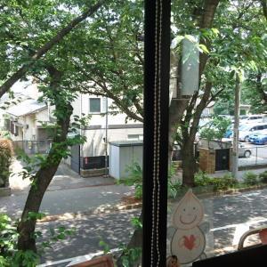 事務所の窓から~外はすっかり初夏!