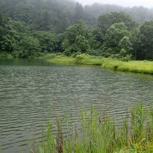 吉が平の大池