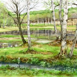 新緑の湖畔 (盛岡市・岩洞湖・岩手県)
