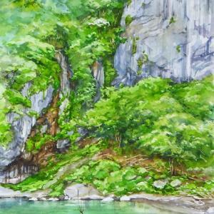 岩壁の夏 (岩泉町・丹洞・岩手県)