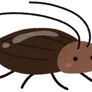 ゴキブリのマイナスとは?