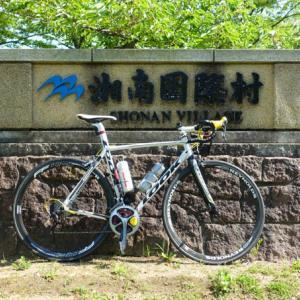久しぶりの湘南国際村は緑がきれいでした