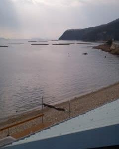 播州室津で牡蛎。
