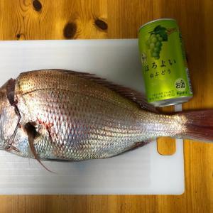 今年最終回、和歌山船釣りの釣果