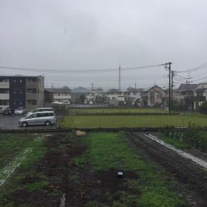 週末土曜日~~雨です・・・