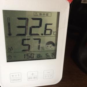 暑いですね・・・