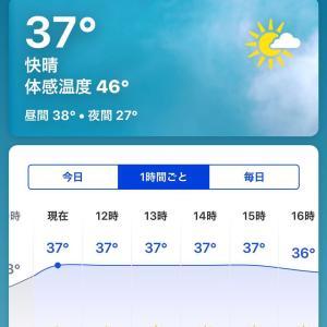 記録的な暑さ