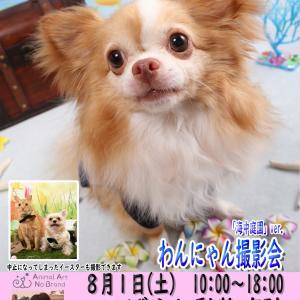 8月1日(土)こばやし動物病院 海中庭園&イースター撮影会開催決定!