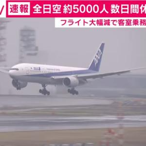 全日空客室乗務員5000人休業、新型コロナウイルス影響で国際線6割減便