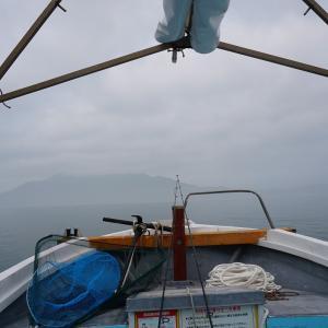 周防大島近辺で釣り№8★ハマチサイズを釣るまで★今日の成果は!?
