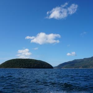 周防大島近辺で船釣り17★ボウズではないけど(/_;)
