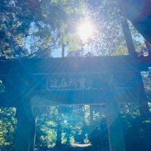 「鎌倉の歴史散歩」後世に伝えられていること