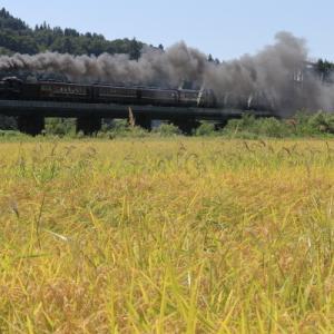 2019年9月 磐越西線 爆煙が流されて
