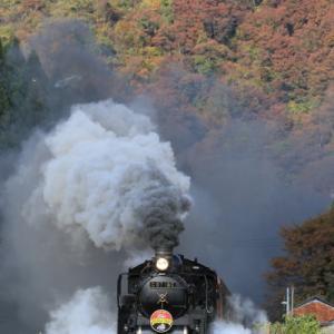 2019年11月 磐越西線 紅葉と爆煙