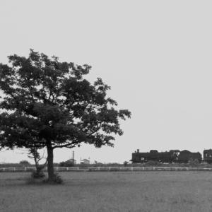 【いにしえの罐たち】 48年前の8月(その9)