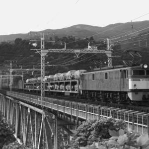 【アーカイブ~電気機関車】 EF60 根府川にて