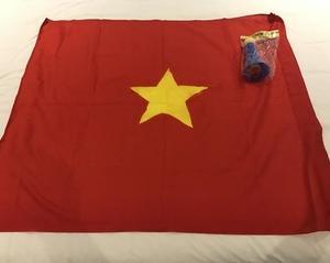 次は日本代表対ベトナム代表。ベトナム代表情報。