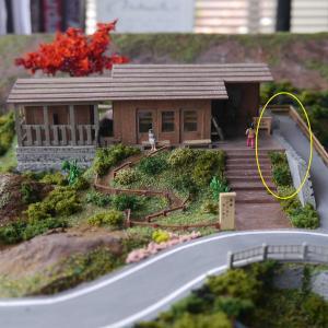 ビジターセンター周辺の緑化③