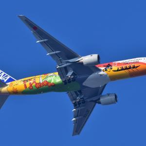 906(2020154) 新宿上空機