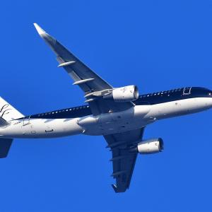 1113(2021016) 新宿上空機