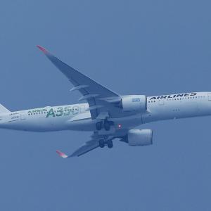 1310(2021213) 中野上空のA359エコ塗装機