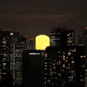 1436(2021339) 中秋の名月(かつ8年ぶりの満月)