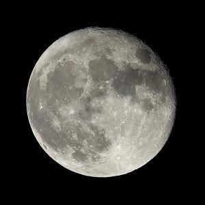 1437(2021340) 16夜お月さん