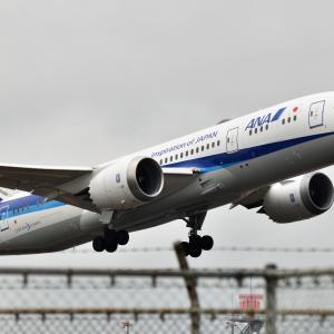 635(2019128) 函館空港 その6(再びNo.8ゲートへ)