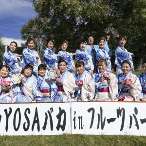 第6回 遠州よさこい YOSAバカINフルーツパーク『薫風』