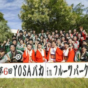 第6回 遠州よさこい YOSAバカINフルーツパーク『浜松学生連 鰻陀羅』