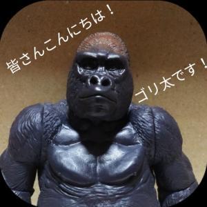 ごり押しゴリ太くん!~No.13~
