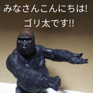 ごり押しゴリ太くん!~No.95~