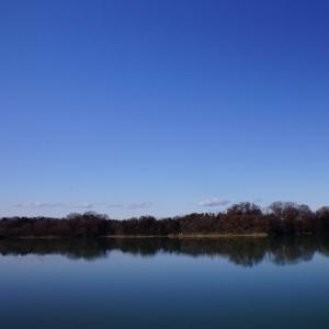 広い空を見に☆多摩湖