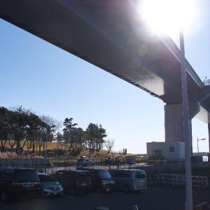 東京の海と好きな橋