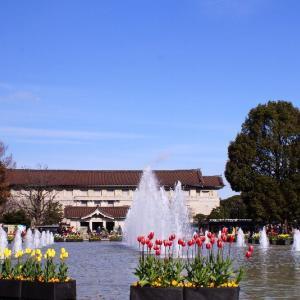 アイスチューリップと噴水☆上野公園