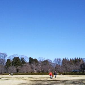 映り込みの空☆神代植物公園