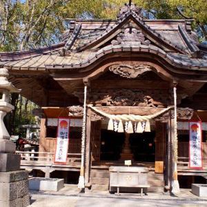 地元散歩☆神社の龍いろいろ