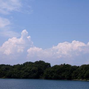 多摩湖散歩☆空を見上げて