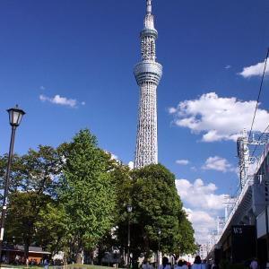 ミズマチと隅田公園☆青空が嬉しい