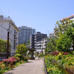目黒区☆みどりの散歩道