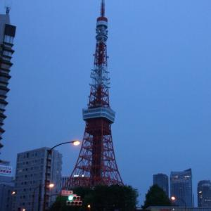 東京タワー☆インフィニティダイヤモンドヴェール