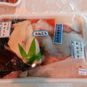 今が旬 常磐もの魚介類